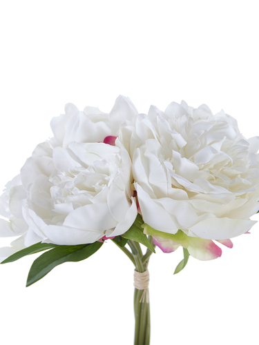 """Picture of 10"""" PEONY BUNDLE 5F 1B"""