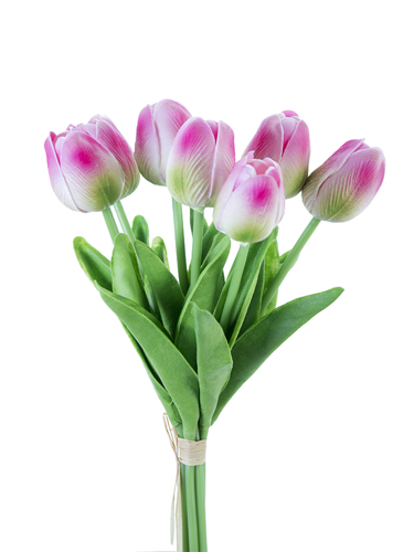 "Picture of 12"" TULIP STEM X7"