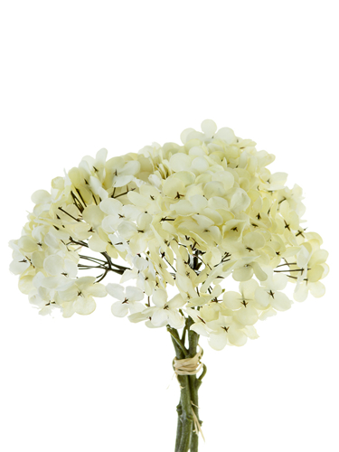 "Picture of 12""ROUND HYDRANGEA BOUQ."
