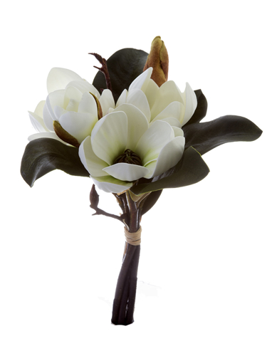 "Picture of 11""MAGNOLIA TREE BUNDLE"