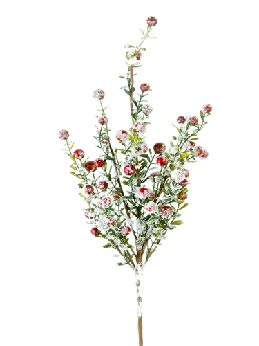 """Picture of 21"""" SNOWY BOXWOOD BERRY  SPRAY"""