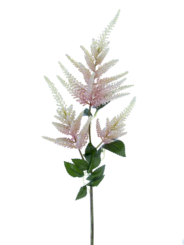 "Picture of 33"" ASTILBE SPRAY"