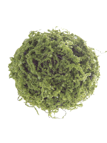 "Picture of 8"" MOSSY TWIG BALL"