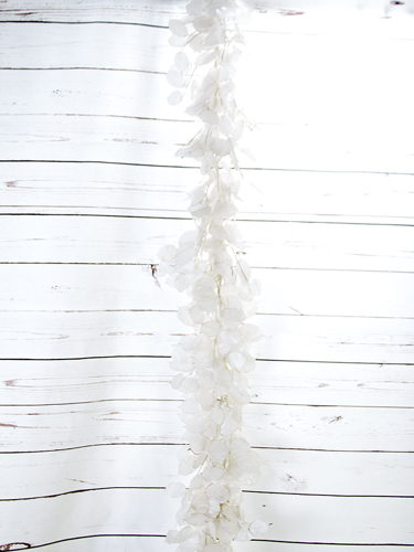 Picture of 6' LUNARIA SLVR DOLLAR GARLAND
