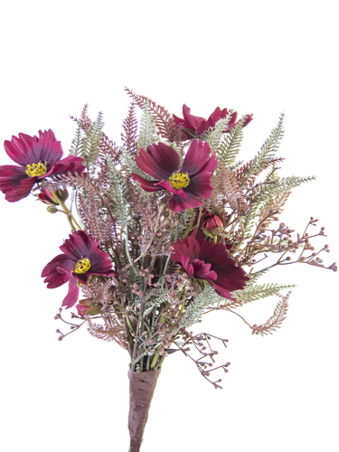 """Picture of 17"""" COSMOS & FERN MEDLEY BUSH"""