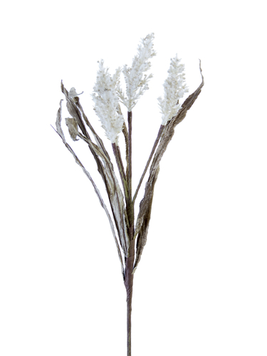 """Picture of 19"""" DRIED SORGHUM W/LVS SPRAY"""