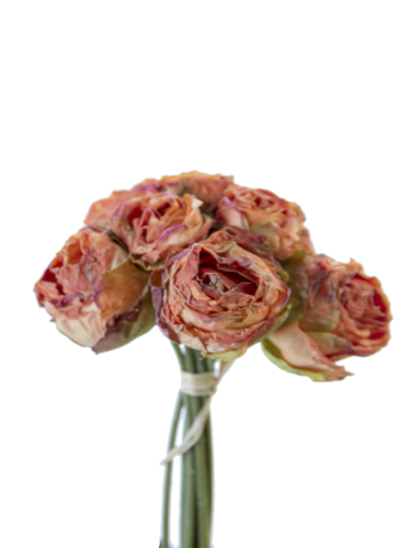"""Picture of 9"""" DRIED ROSE BUNDLEX8"""