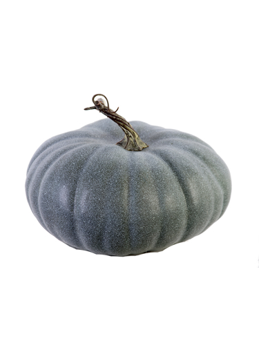 "Picture of 8"" CINDERELLA PUMKIN"