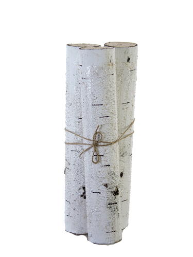 "Picture of 14"" BIRCH LOG BUNDLE X3"