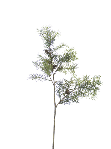 """Picture of 36"""" LARCH W/CONES SPRAY"""