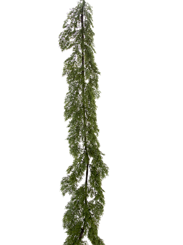 Picture of 6' CYPRESS PINE GARLAND