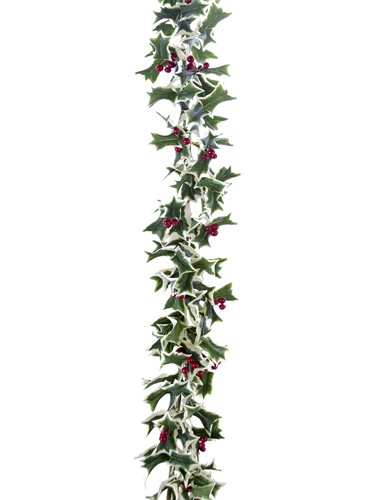 Picture of 5'HOLLY LF & BERRY GARLAND