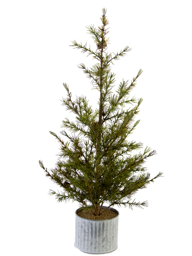 """Picture of 28"""" LARCH PINE TREE W/POT"""