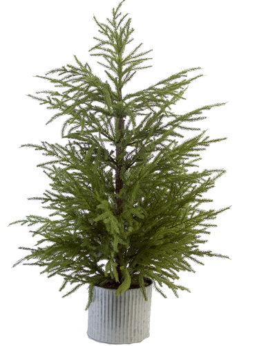 "Picture of 42"" FIR PINE TREE"