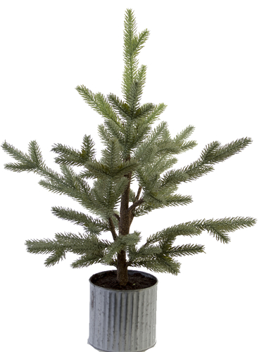 "Picture of 28"" BALSAM PINE TREE"