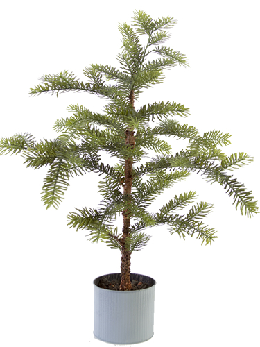 "Picture of 35"" SITKA PINE TREE POT"