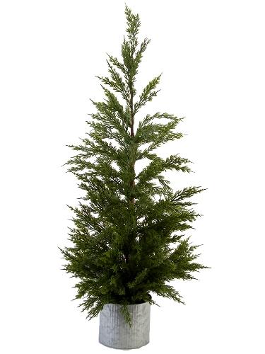"Picture of 36"" CEDAR PINE TREE"