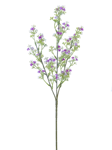 "Picture of 25.6""WILD BABYSBREATH SP X3"