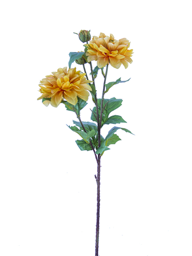"Picture of 25"" DAHLIA SPRAY 2F2B"