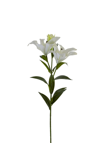 "Picture of 34""ORIENTAL LILY SPRAY"