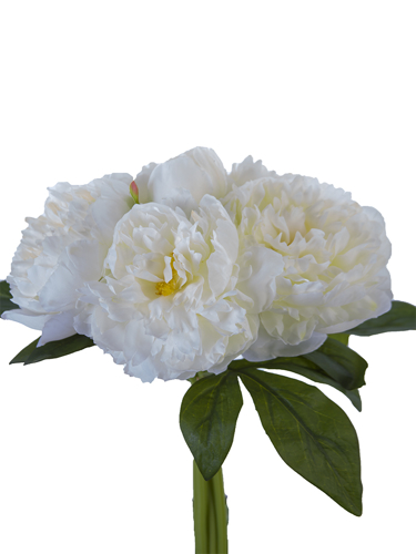 """Picture of 11.8""""PEONY BUNDLE"""