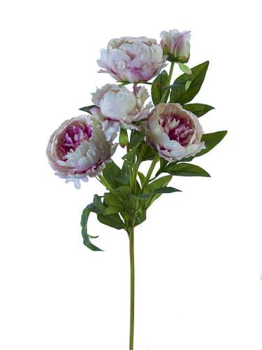"Picture of 31.5"" RUFFLED PEONY SPRAY"