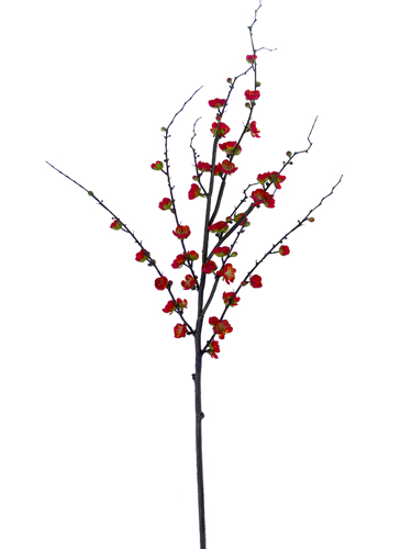 """Picture of 51"""" PLUM BLOSSOM BRANCH"""
