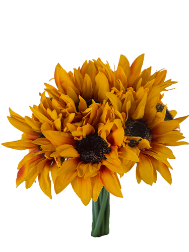 "Picture of 10"" SUNFLOWER BOUQUET X8"