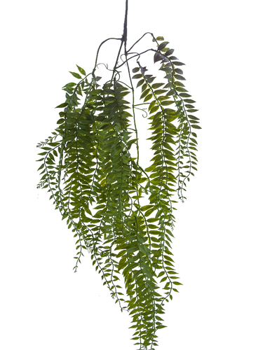 """Picture of 34"""" HANGING FOLIAGE"""