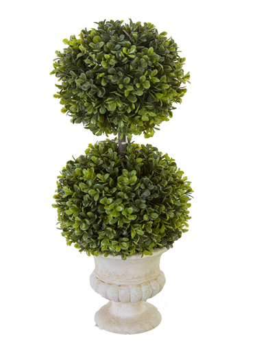"""Picture of 18"""" BOXWOOD TOPIARY X2 W/URN"""