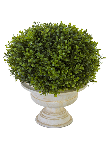 """Picture of 15"""" BOXWOOD TOPIARY W/URN"""