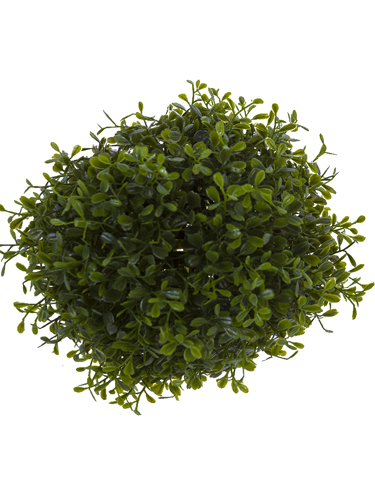 """Picture of 8"""" BOXWOOD BALL"""
