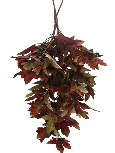 """Picture of 28""""  RED MAPLE LF TDROP"""