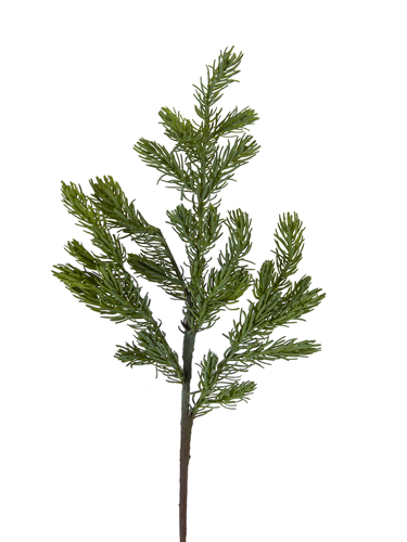 "Picture of 30"" MOUNTAIN FIR BRANCH"