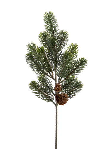 """Picture of 19.5"""" SPRUCE W/CONE SPRAY"""