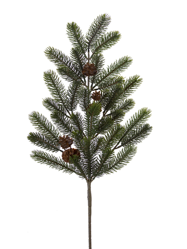 """Picture of 30"""" SPRUCE W/CONE SPRAY"""