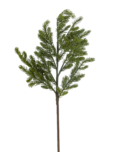 """Picture of 46"""" MOUNTAIN FIR BRANCH"""