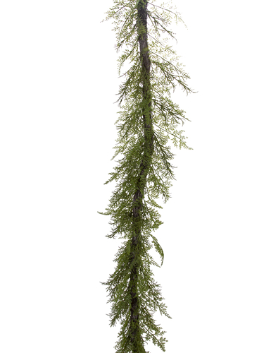 Picture of 6' CYPRESS GARLAND