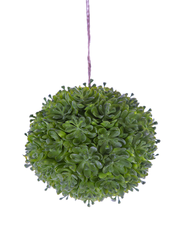 """Picture of 4"""" SUCCULENT BALL"""