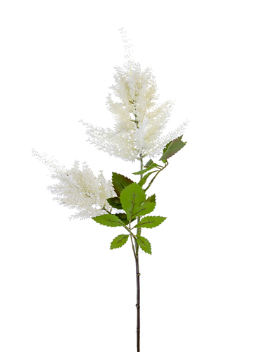 """Picture of 33"""" ASTILBE SPRAY"""