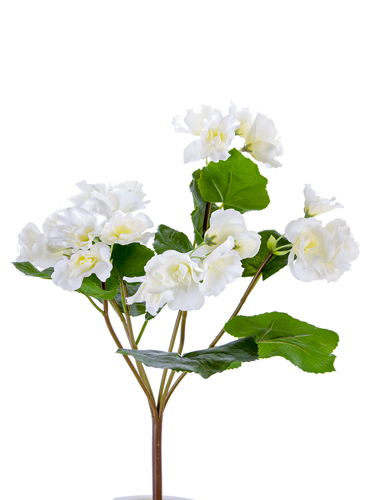 """Picture of 17"""" BEGONIA SPRAY"""