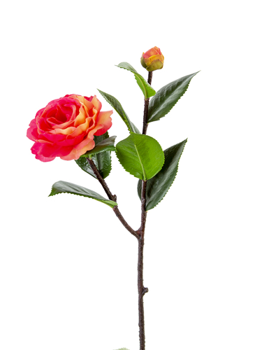 """Picture of 20"""" CAMELIA SPRAY"""