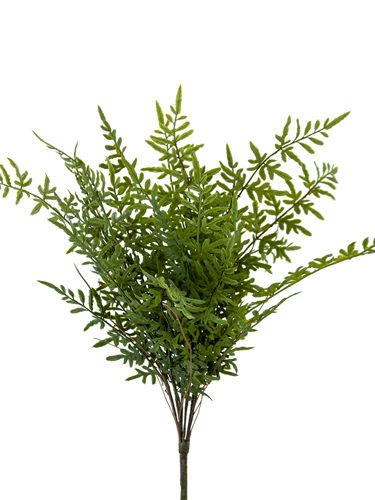 """Picture of 25.5"""" PTERIS LEAVES BUSH"""