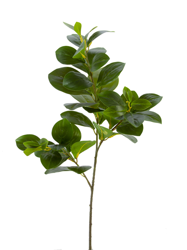 """Picture of 29"""" WATERCRESS LEAVES SPRAY"""