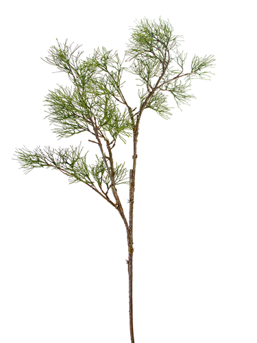 """Picture of 47"""" LARCH PINE SPRAY"""