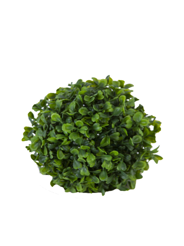 """Picture of 6""""BOXWOOD BALL"""