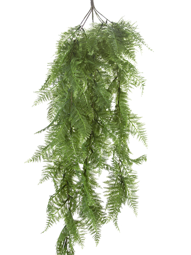 """Picture of 41.5""""DRYOPTERIS FERN HANGING"""